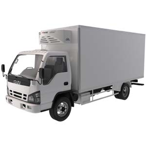 Japanese Commercial Truck